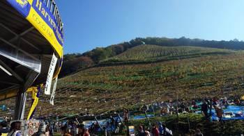 harvest festival 2013-01.JPG