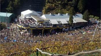 harvest festival 2013-04.JPG