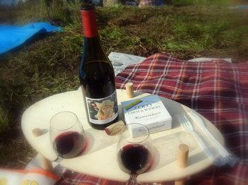 vineyard 03.JPG
